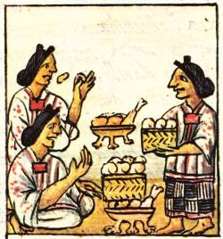 aztec women roles and society From the very beginning women were working and weaving from marriage an aztec woman's ambition fro birth was to be married women were entitled and chosen for marriage unless they chose to devote their lives to temple service.