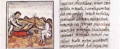 Florentine Codex (from book 9)